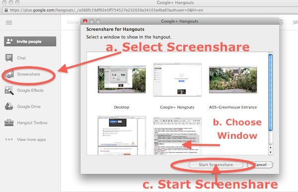 google-screenshare