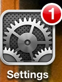 iPhone settings icon