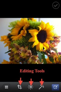 sunflower photo and editing icons before posting ot Facebook