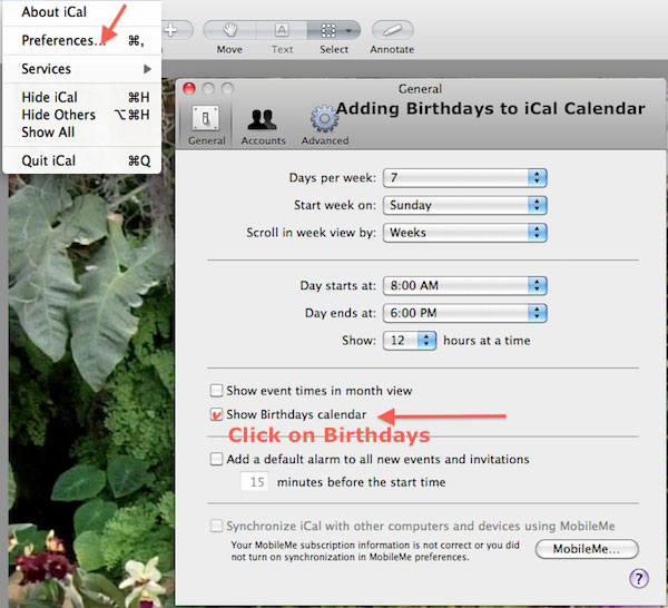 iCal Preferences - Adding Birthdays