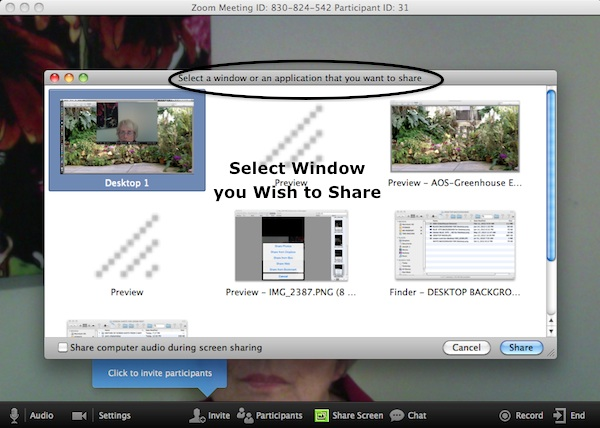 ZOOM - Screen Share from the Mac